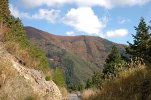 ダルガ峰線